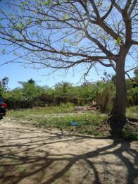 Vendo terreno  en Juan Dolio  de 361 metros
