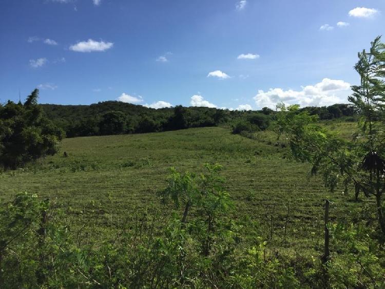 Finca en Venta en Baní para Producción Agrícola