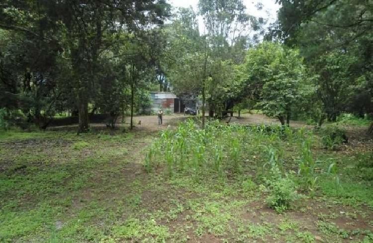 Terreno en Km. 26 sobre Carretera a El Salvador Guate