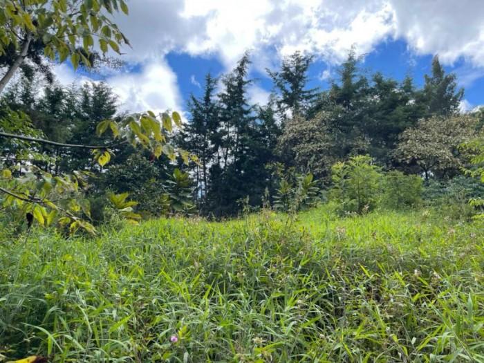 CityMax vende terreno amplio en santo Domingo Xenacoj