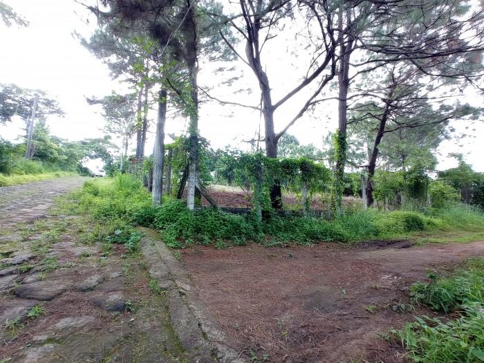 Terreno de 1,500 varas cercano al Encanto Country Club