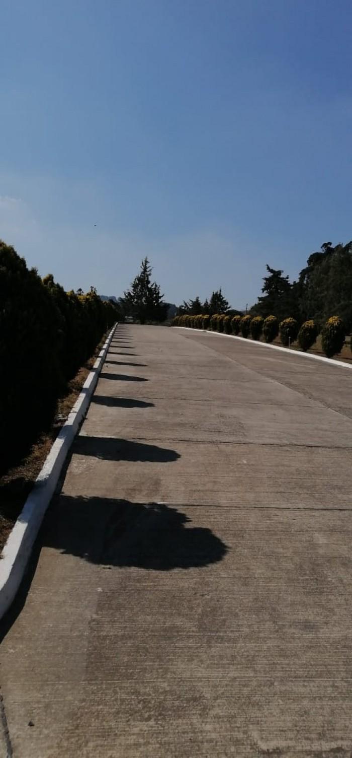Terreno en Venta de 3 Criptas Cementerio Los Olivos CES