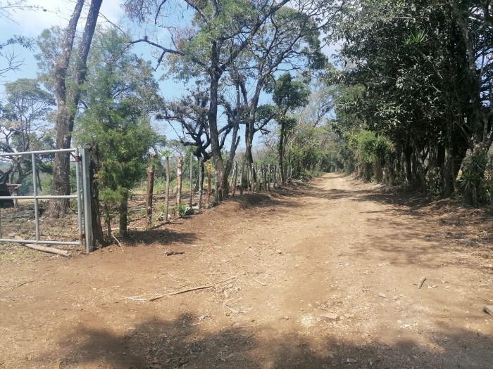 Vendo Terreno para desarrollo en Carretera El Salvador