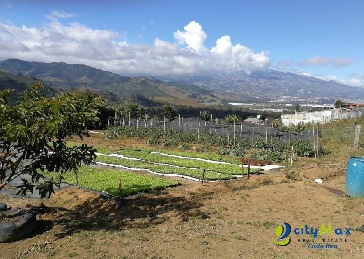 Se vende terreno Agrícola de 5071 m2 Tobosi de Cartago