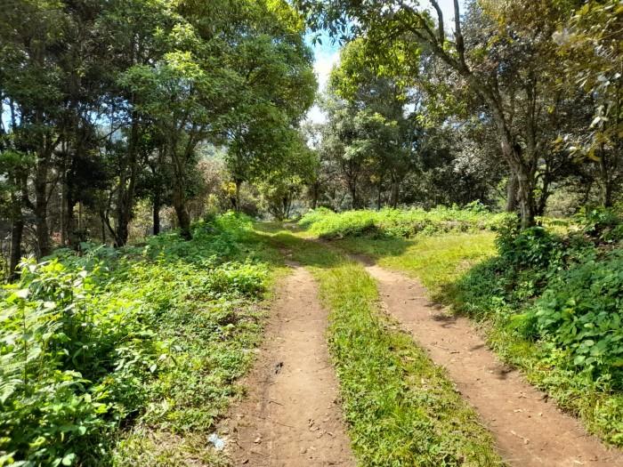 Citymax promueve amplio terreno en San Pedro Sac.