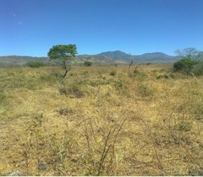 Terreno Grande en Venta, Moyuta Jutiapa