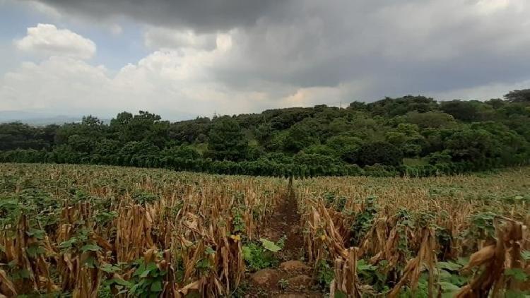 Terreno en Venta Santa Catarina Pinula para Inversión