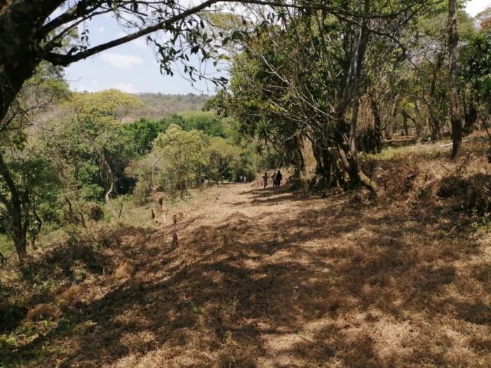 VENTA Terreno 8 manzanas km 26.5 a Santa Elena Barillas