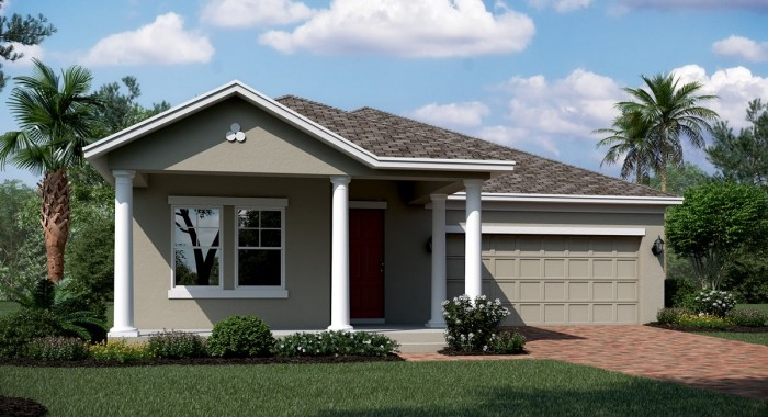 HOUSE FOR SALE BRAND NEW  IN MOUNT DORA, FL 4BED 3BATH