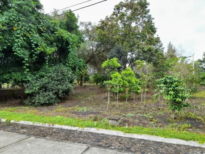 CityMax Vende Terreno Plano en Portal de las Rosas