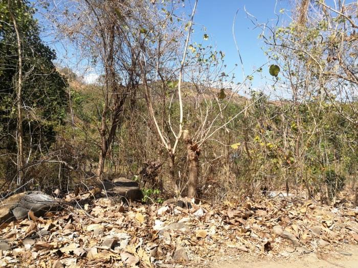Vendo Terreno en Lotificación de San Diego La Libertad