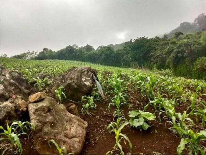 Terreno en Venta Jutiapa, más de 2 manzanas