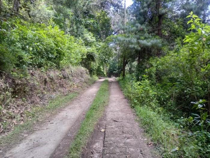 Terreno en Venta En Carretera a El Manzanillo San Lucas
