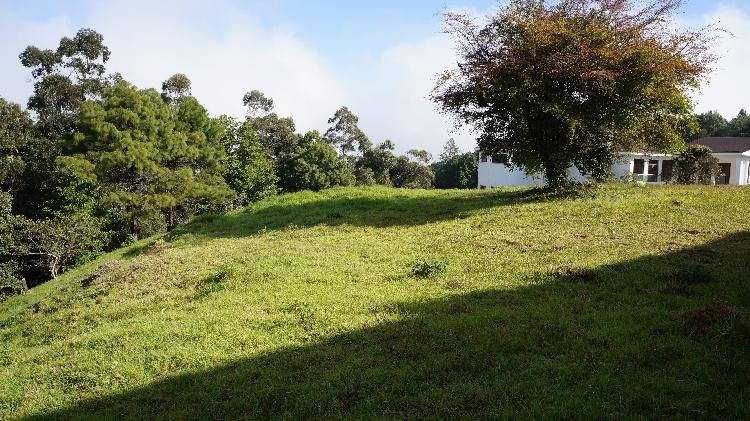 Terreno en Venta Las Alturas 2 Km. 18.5 CES