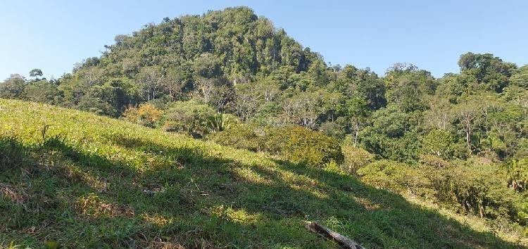 Terreno en Venta con excelente ubicación Puerto Barrios